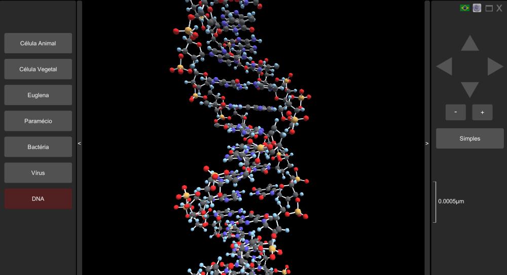 Molécula de DNA em 3D
