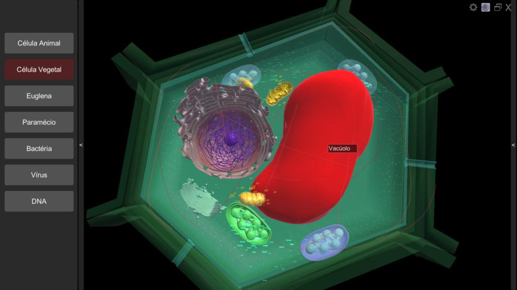 Visualização de legendas no software Célula Virtual 3D
