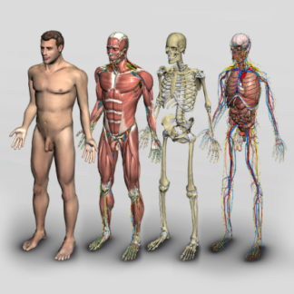 software anatomia humana