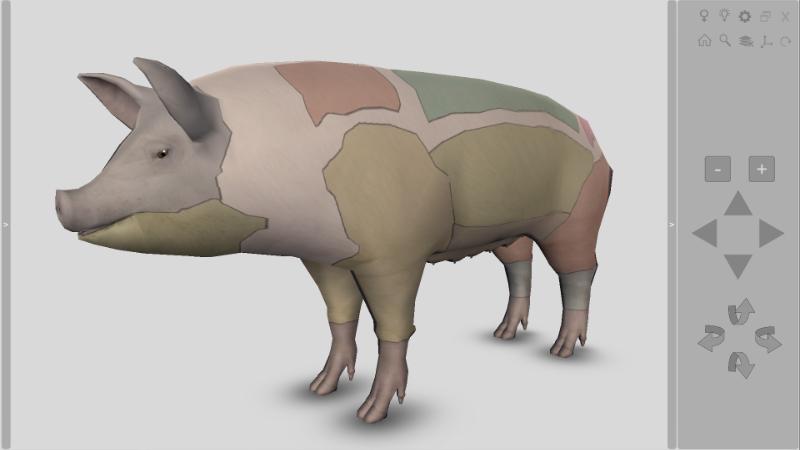 cortes carne porco